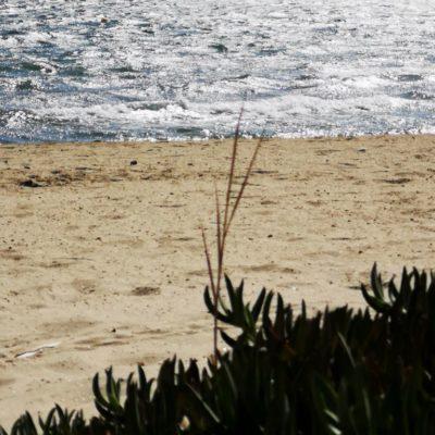 Het strand van Tamaris