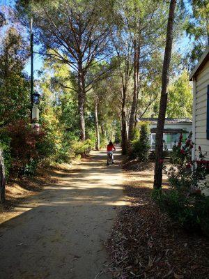 4 sterren camping familie stacaravan goedkope gezellig familie