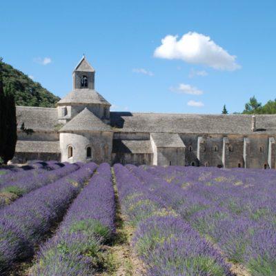 De Abbaye de Sénanque