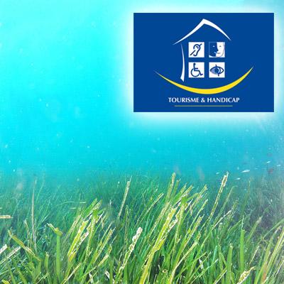 Ein geeigneter und zugänglicher Unterwasserpfad in Giens