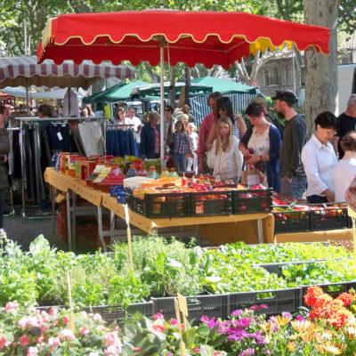 Ontdek de markten van de Provence vanaf de camping