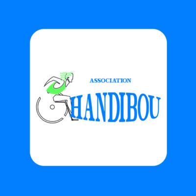 De camping is partner van de organisatie 'Handibou'